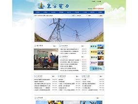 东方电力公司